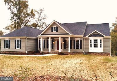 Westminster Single Family Home For Sale: Hammerstone Drive