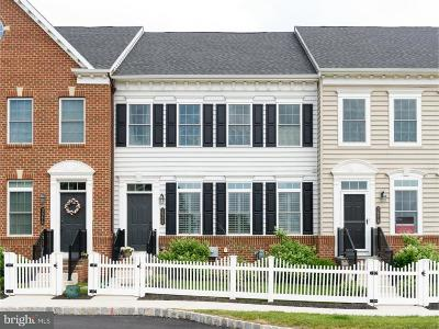 Bucks County Townhouse For Sale: 3982 Cephas Child Road