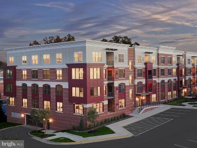 Fairfax Townhouse For Sale: 3985 Norton Place #201