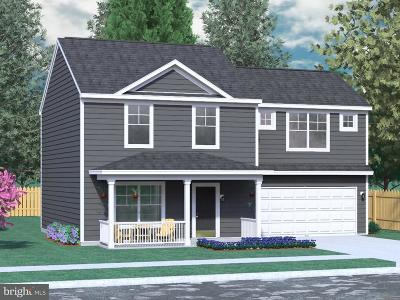 Martinsburg Single Family Home For Sale: Owl Avenue