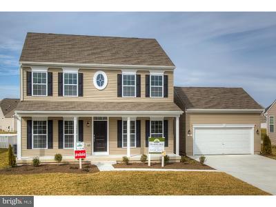 Magnolia Single Family Home For Sale: 32 Elm Almonds Way