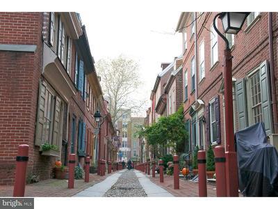 Philadelphia Single Family Home For Sale: 113 N Bread Street #3D5