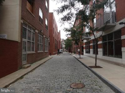 Philadelphia Single Family Home For Sale: 113 N Bread Street #3H8