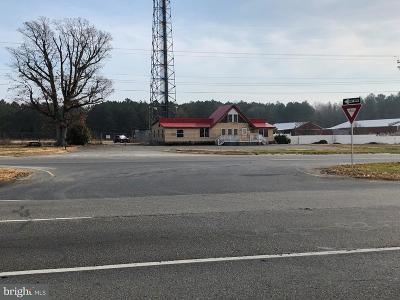 Harrington Commercial For Sale: 17959 S Dupont Highway