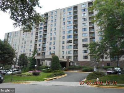Alexandria City, Arlington County Condo For Sale: 6300 Stevenson Avenue #LL02
