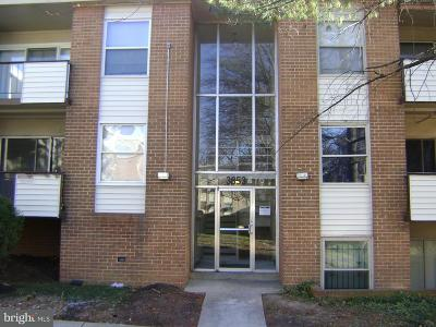 Suitland Rental For Rent: 3853 Saint Barnabas Road #T