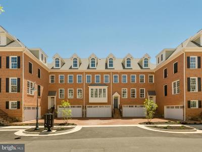 Fairfax Townhouse For Sale: 10663 Yorktown Court