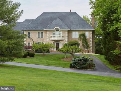 Potomac Single Family Home For Sale: 9525 Newbridge Drive