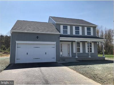Felton Single Family Home For Sale: Pre Erin Avenue #PRES