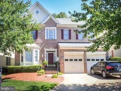 Vienna Single Family Home For Sale: 8404 Tysons Trace Court