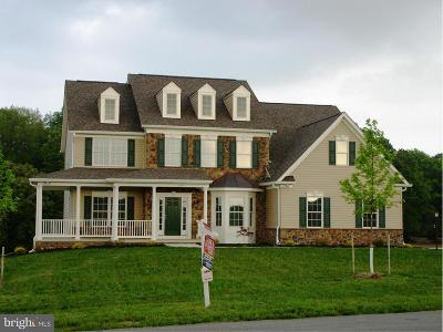 Carroll County Single Family Home For Sale: 18 Quiet Meadow Way