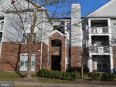 Ashburn Rental For Rent: 20273 Beechwood Terrace #301