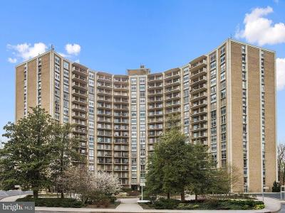 Silver Spring Townhouse For Sale: 9039 Sligo Creek Parkway #815
