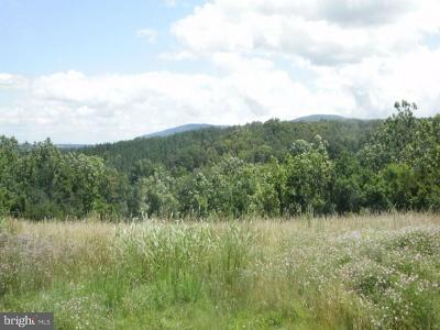 Clarke County, Harrisonburg City, Page County, Rockingham County, Shenandoah County, Warren County, Winchester City Residential Lots & Land For Sale: Mountain Brook Lane