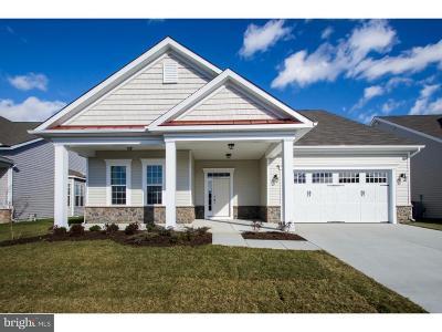 Bridgeville Single Family Home For Sale: 45 Champion Lane