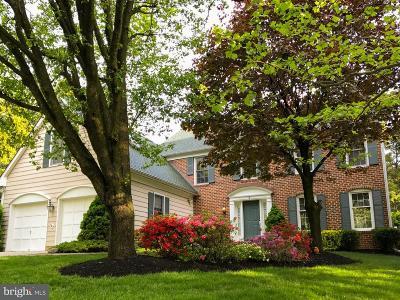 Potomac Single Family Home For Sale: 2 Big Tree Court