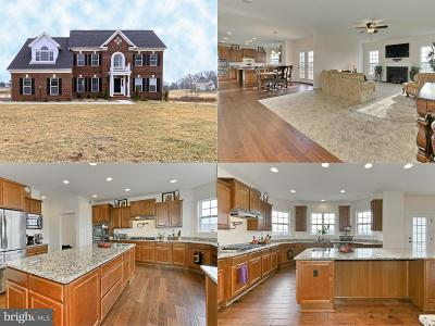 Loudoun County Single Family Home For Sale: 42719 Prairie Merlin Court