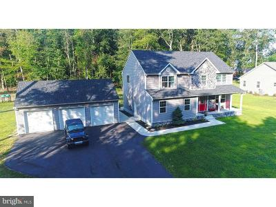 Felton Single Family Home For Sale: 767 Campground Road