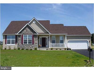 Felton Single Family Home For Sale: Hill Erin Avenue