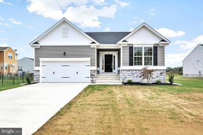 Felton Single Family Home For Sale: Wind Erin Avenue