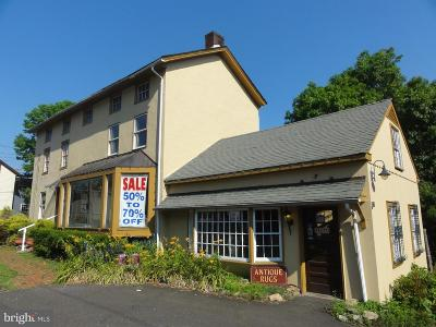 Lahaska PA Commercial For Sale: $5,000