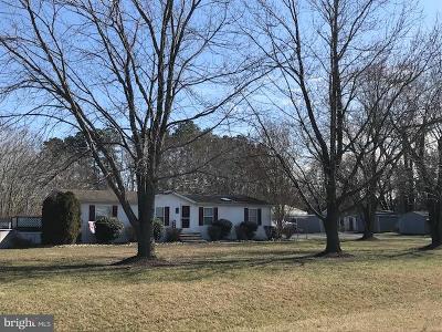 Denton, Preston, Ridgely Single Family Home For Sale: 25738 Burrsville Road