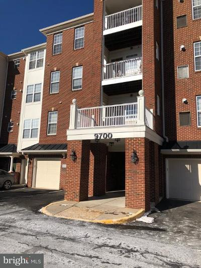 Manassas Park Single Family Home Active Under Contract: 9700 Elzey Place #102