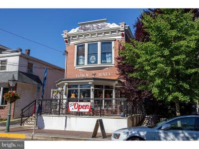 New Hope PA Commercial For Sale: $2,475
