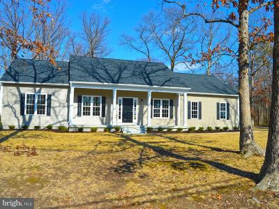 Spotsylvania Single Family Home For Sale: 2704 Rose Avenue