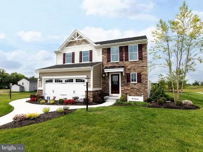 Jefferson Single Family Home For Sale: 4695 Basilone Lane