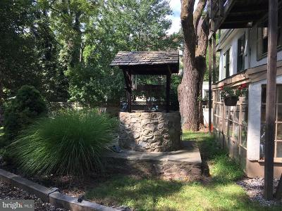New Hope PA Commercial For Sale: $1,000,000