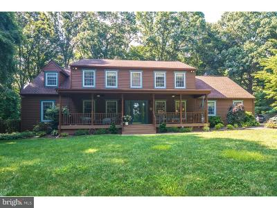 Doylestown Single Family Home For Sale: 2968 Valley View Drive