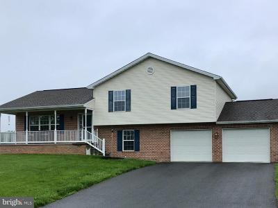 Chambersburg Single Family Home For Sale: 223 Kolpark Drive