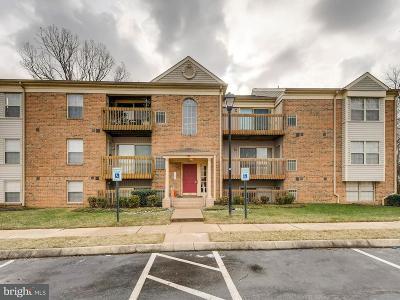 Baltimore Townhouse For Sale: 1300 Sugarwood Circle #304