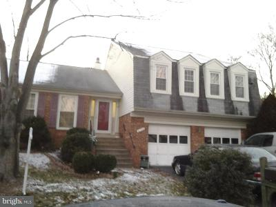 Burke Single Family Home For Sale: 6130 Wicklow Drive