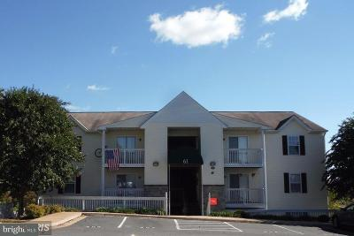 Stafford Rental For Rent: 61 Fern Oak Circle #300