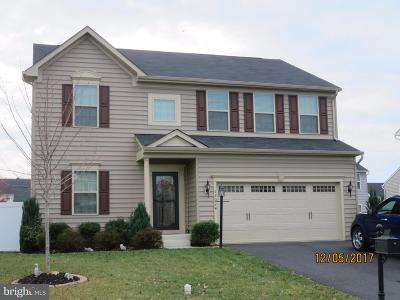 Culpeper Single Family Home For Sale: 12024 Live Oak Drive