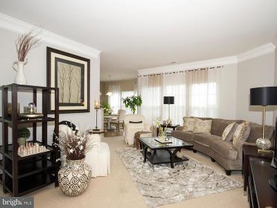 Harvre De Grace, Havre De Grace Single Family Home For Sale: 204 Secretariat Drive #M