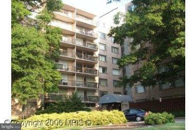 Hyattsville Rental For Rent: 4410 Oglethorpe Street #412