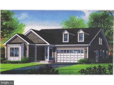 Felton Single Family Home For Sale: 87 Rockwood Boulevard