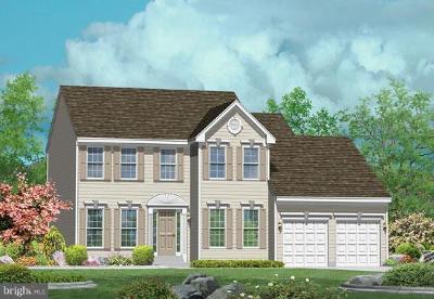 Elkton Single Family Home For Sale: 6 Antego Drive