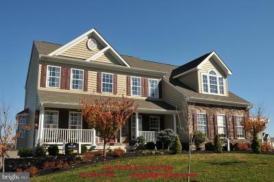 Elkton Single Family Home For Sale: 7 Antego Drive