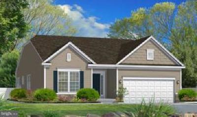 Elkton Single Family Home For Sale: 10 Antego Drive