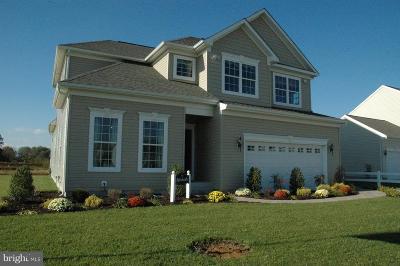Elkton Single Family Home For Sale: 12 Antego Drive
