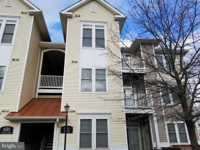 Fauquier County Condo Active Under Contract: 6185 Willow Place #208