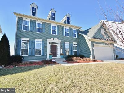 Single Family Home For Sale: 1313 Volunteer Drive
