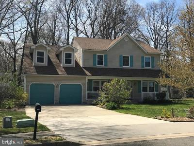 Dover Single Family Home For Sale: 130 Red Oak Drive