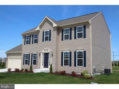Magnolia Single Family Home For Sale: 51 Plica Circle