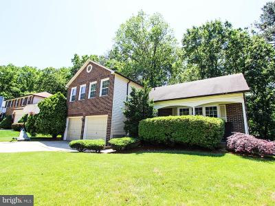 Burke Single Family Home For Sale: 6542 Raftelis Road