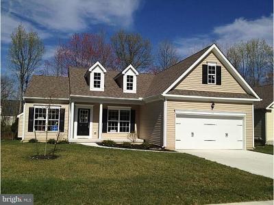 Felton Single Family Home For Sale: Beth Erin Avenue